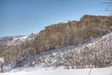 TBD Muleshoe Road - Photo 6