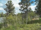 27280 Ridgeline Drive - Photo 50