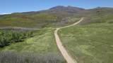 TBD Muleshoe Road - Photo 2