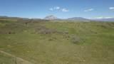TBD Muleshoe Road - Photo 4