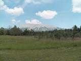 TBD Mt. Elbert Drive - Photo 1