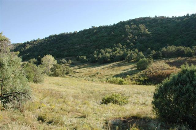 Spanish Highlands Se1/4 Of Ne1/4 , Bon Carbo, CO  (MLS #07-655) :: Sarah Manshel of Southern Colorado Realty