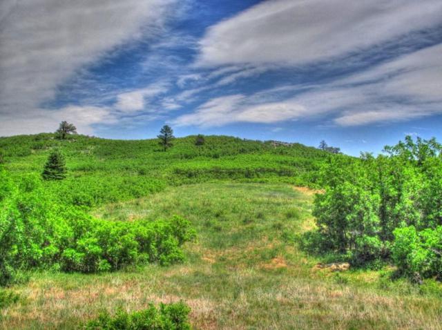 Tract 26 Raspberry Mtn. Ranch, La Veta, CO 81055 (MLS #14-435) :: Bachman & Associates