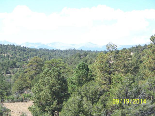 Fawn Rd, Weston, CO 81091 (MLS #14-692) :: Sarah Manshel of Southern Colorado Realty