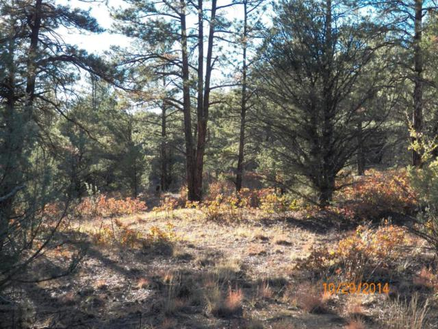 TBD Hidden Canyon Trail A, Aguilar, CO 81020 (MLS #14-784) :: Sarah Manshel of Southern Colorado Realty