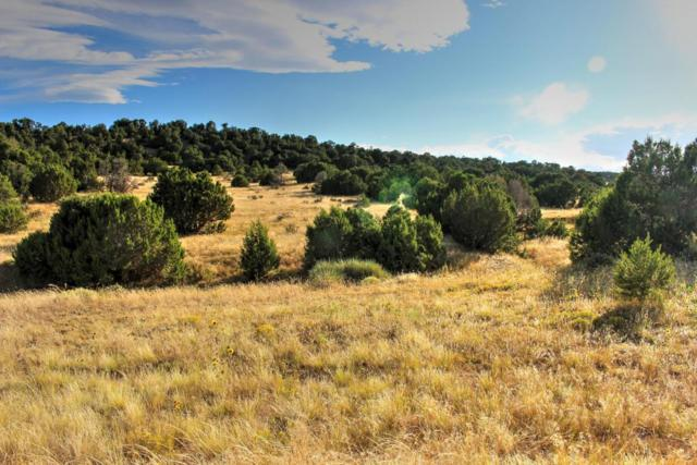 Rio Cucharas Phase #2 #594, Walsenburg, CO 81089 (MLS #15-776) :: Sarah Manshel of Southern Colorado Realty