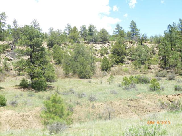 lot 179 Rancho La Garita, Trinidad, CO 81082 (MLS #15-78) :: Big Frontier Group of Bachman & Associates