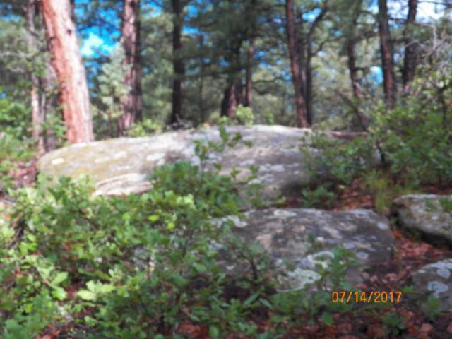 TBD Ridgeline Drive South Unit 2 Lot 22, Trinidad, CO 81082 (MLS #15-887) :: Sarah Manshel of Southern Colorado Realty