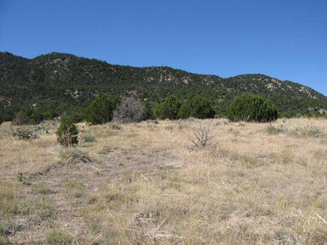 Lot 10 Pinon Ridge Estates, Aguilar, CO 80219 (MLS #16-1054) :: Sarah Manshel of Southern Colorado Realty