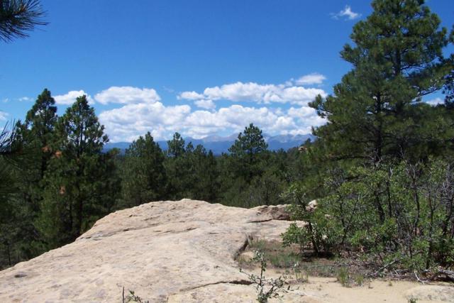 16927 Pine Ridge Dr # 8, Weston, CO  (MLS #16-1066) :: Sarah Manshel of Southern Colorado Realty
