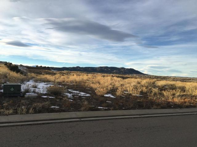Corundum Rd Lot 7, Trinidad, CO 81082 (MLS #16-29) :: Big Frontier Group of Bachman & Associates