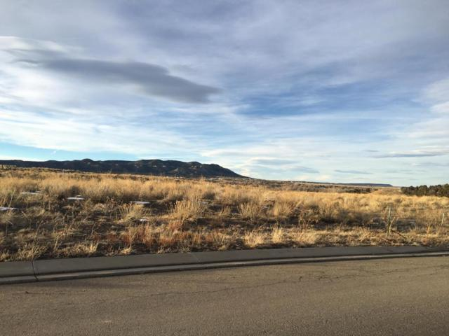 Corundum Rd Lot 8, Trinidad, CO 81082 (MLS #16-30) :: Big Frontier Group of Bachman & Associates