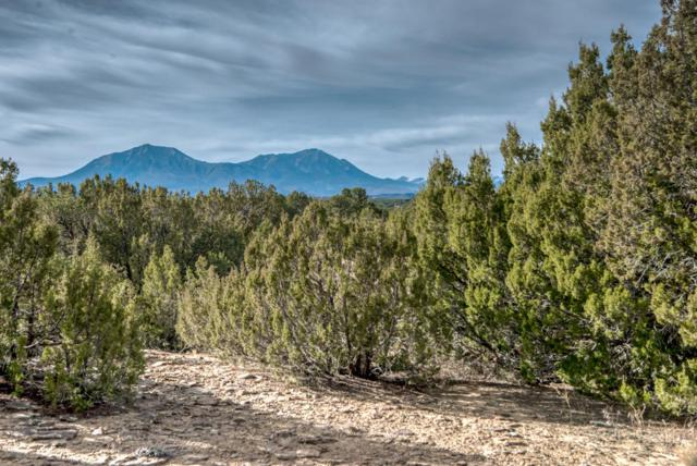 tbd Cr 340 Tract 1, Walsenburg, CO 81089 (MLS #16-572) :: Sarah Manshel of Southern Colorado Realty