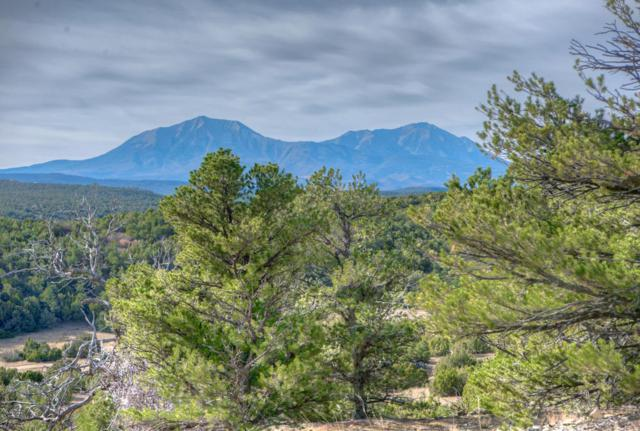 tbd Cr 340 Tract 2, Walsenburg, CO 81089 (MLS #16-574) :: Sarah Manshel of Southern Colorado Realty