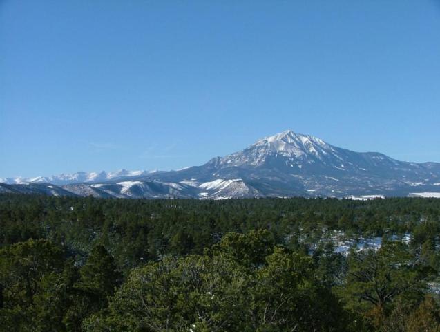 Fishers Peak View #141, Pryor, CO  (MLS #16-639) :: Sarah Manshel of Southern Colorado Realty