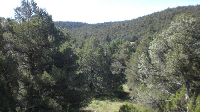 Picketwire Ranch Lot 2A, Trinidad, CO 81082 (MLS #16-680) :: Sarah Manshel of Southern Colorado Realty