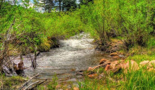 Lot 19 River Run At Spanish Peaks, Cuchara, CO 81055 (MLS #16-825) :: Big Frontier Group of Bachman & Associates