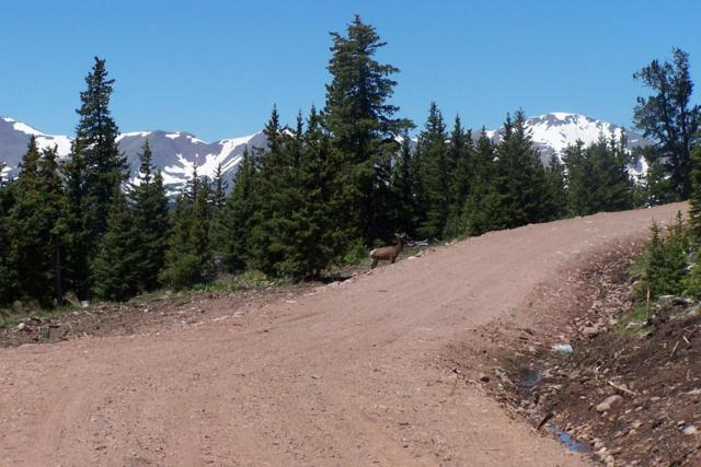 Timber Ridge Trail # 6, Cuchara, CO  (MLS #16-882) :: Big Frontier Group of Bachman & Associates