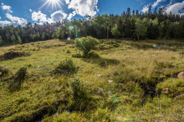 22525 Glaves Lane, Cuchara, CO 81055 (MLS #16-894) :: Sarah Manshel of Southern Colorado Realty
