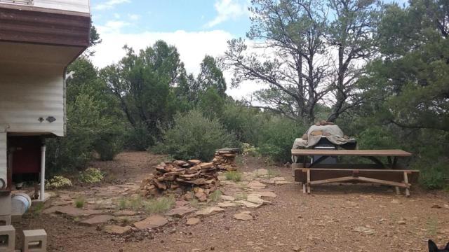 TBD Ponderosa Hills Phase 2 Lot 117, Trinidad, CO 81082 (MLS #17-1018) :: Sarah Manshel of Southern Colorado Realty