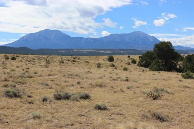 River Ridge Ranch Filing 1 Lot 9, Walsenburg, CO 81089 (MLS #17-1042) :: Sarah Manshel of Southern Colorado Realty