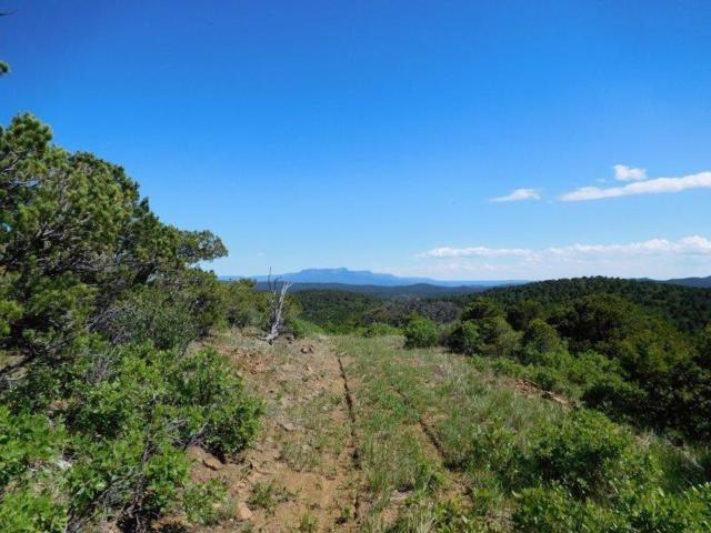 Tbd Timber Canyon, Trinidad, CO 81082 (MLS #17-1059) :: Sarah Manshel of Southern Colorado Realty