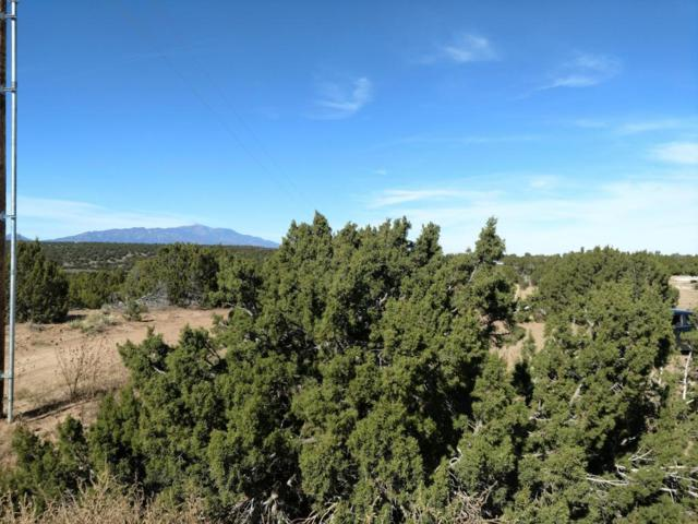 Tract 20 Huerfano Blvd, Walsenburg, CO 81089 (MLS #17-1148) :: Sarah Manshel of Southern Colorado Realty