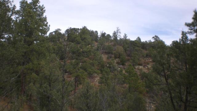 Colorado Canyon Tract 7, Trinidad, CO 81082 (MLS #17-1163) :: Sarah Manshel of Southern Colorado Realty