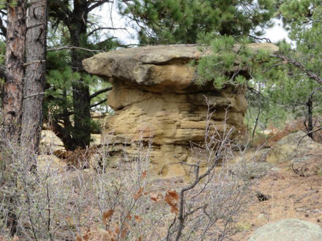 Lot 14 & 13 Rancho Escondido Unit 2, Weston, CO 81091 (MLS #17-1248) :: Sarah Manshel of Southern Colorado Realty