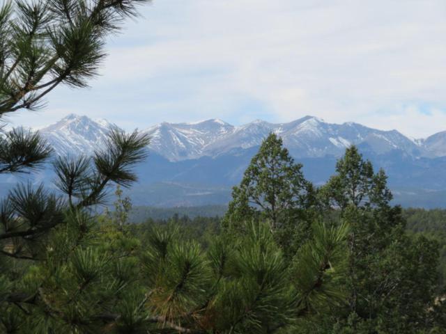 Lot 15, Rancho Escondido Unit 2, Weston, CO 81091 (MLS #17-1249) :: Sarah Manshel of Southern Colorado Realty