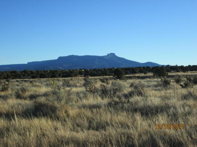 40 ac m/l Rancho Verde Tract-96, Trinidad, CO 81082 (MLS #17-1258) :: Sarah Manshel of Southern Colorado Realty