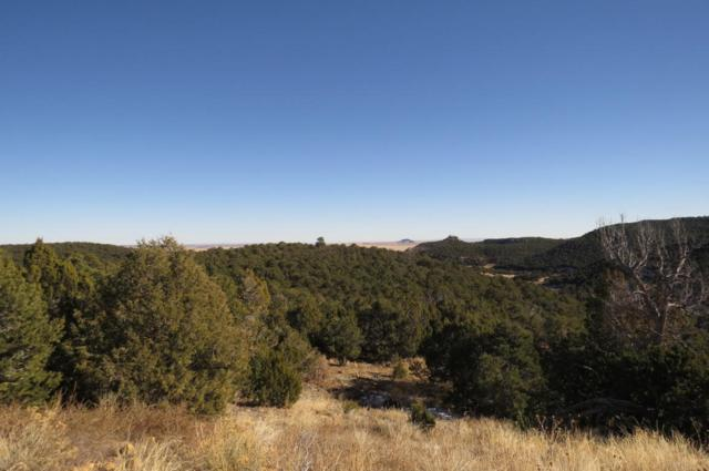 Rugby Mines Road Parcel 90, Pryor, CO 81089 (MLS #17-1278) :: Sarah Manshel of Southern Colorado Realty