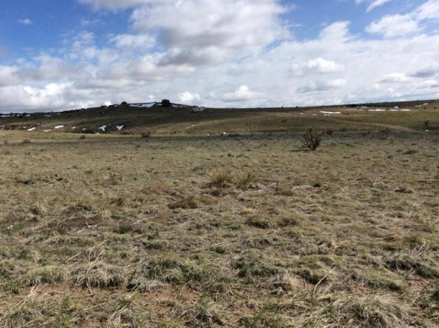 Ghost River Ranch #141, Walsenburg, CO 81089 (MLS #17-1307) :: Sarah Manshel of Southern Colorado Realty