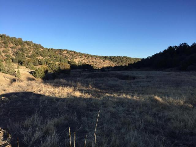 Primero Ranch, Trinidad, CO 81002 (MLS #17-343) :: Sarah Manshel of Southern Colorado Realty