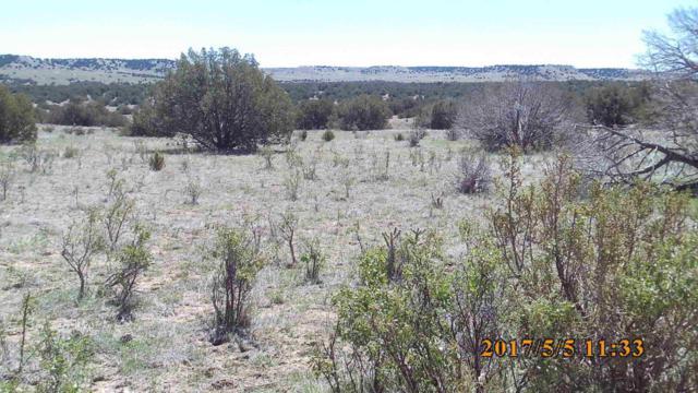 11-28-59 Las Animas Ranch, Trinidad, CO 81082 (MLS #17-358) :: Sarah Manshel of Southern Colorado Realty