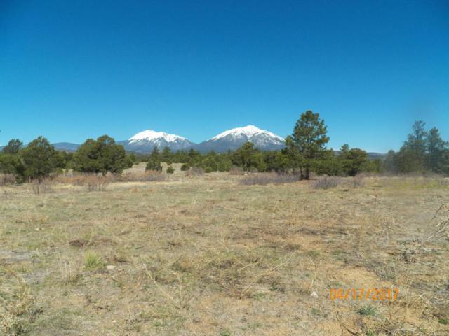 TBD County Road 46, Aguilar, CO 81020 (MLS #17-421) :: Sarah Manshel of Southern Colorado Realty