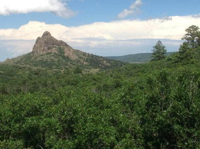 Lot 12 Piney Ridge Ranch, LaVeta, CO 81055 (MLS #17-441) :: Sarah Manshel of Southern Colorado Realty