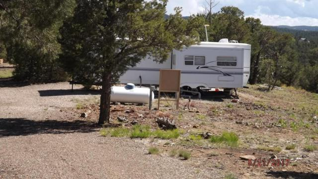 31259 Oso Canyon Road, Trinidad, CO 81082 (MLS #17-522) :: Sarah Manshel of Southern Colorado Realty