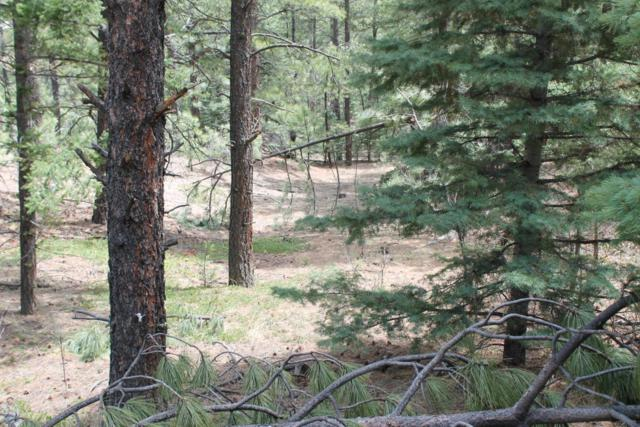 TBD Pine Valley Filing 1 Lot 7, Weston, CO 81091 (MLS #17-786) :: Sarah Manshel of Southern Colorado Realty