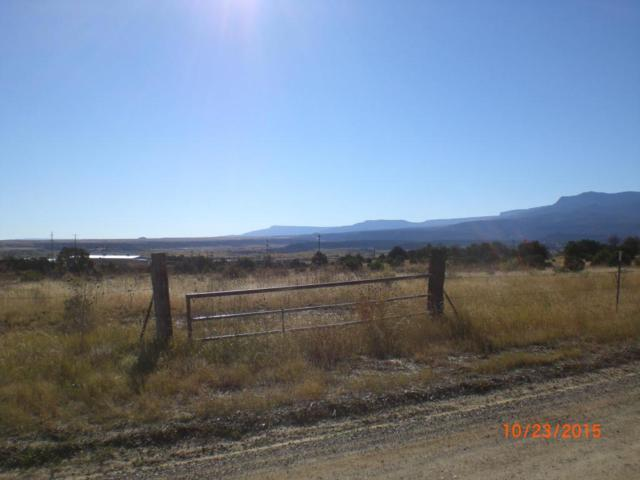 Rancho Verde Rd, Trinidad, CO 81082 (MLS #17-84) :: Sarah Manshel of Southern Colorado Realty