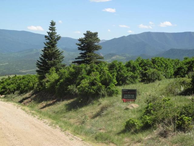 Tres Valles #66, LaVeta, CO 81055 (MLS #17-866) :: Sarah Manshel of Southern Colorado Realty