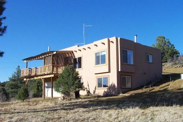 13302 Silver Spruce, Weston, CO 81091 (MLS #17-929) :: Big Frontier Group of Bachman & Associates
