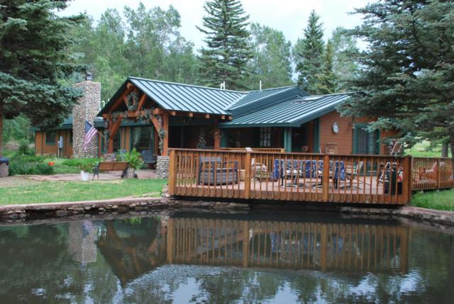 161 Ponderosa Rd, Cuchara, CO 81055 (MLS #17-999) :: Sarah Manshel of Southern Colorado Realty