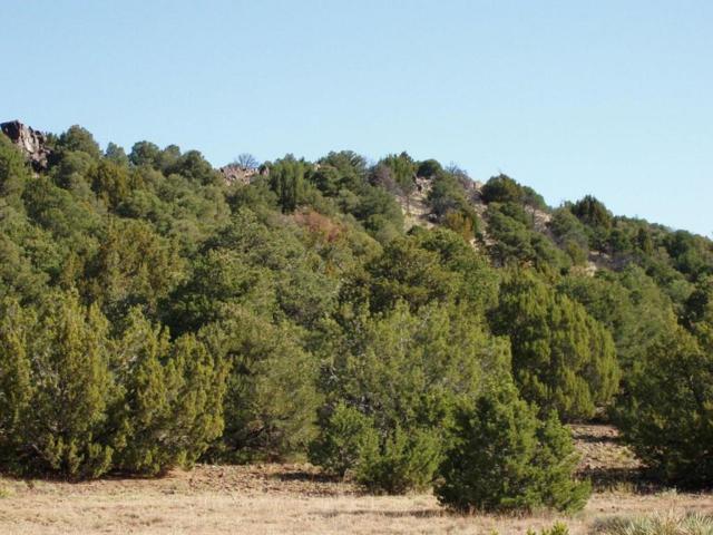 Lot 111 River Ridge Ranch Phase 5, Walsenburg, CO 81089 (MLS #18-100) :: Bachman & Associates