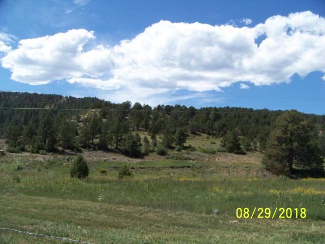 Lot 1 Cielo Grande Rd, Weston, CO 81091 (MLS #18-1023) :: Sarah Manshel of Southern Colorado Realty