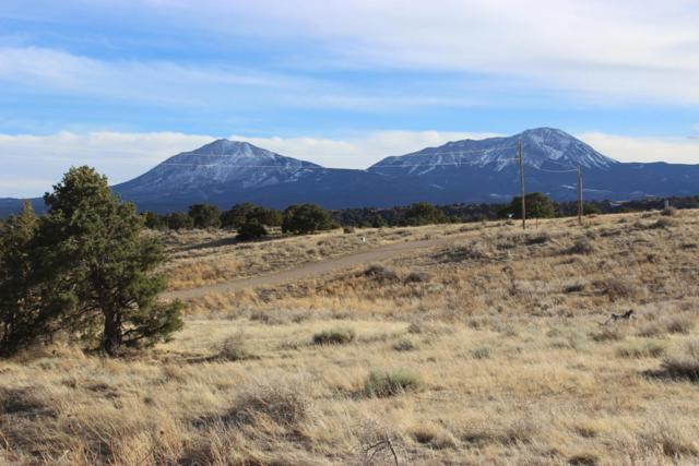 TBD Cheyenne Place #136, Walsenburg, CO 81089 (MLS #18-1081) :: Sarah Manshel of Southern Colorado Realty