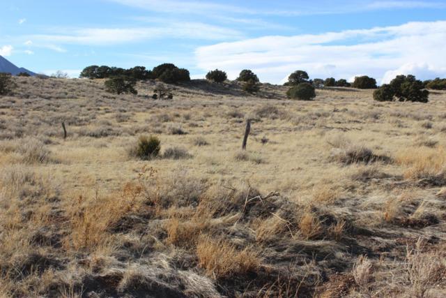 TBD Cheyenne Place #13781089, Walsenburg, CO 81089 (MLS #18-1082) :: Sarah Manshel of Southern Colorado Realty