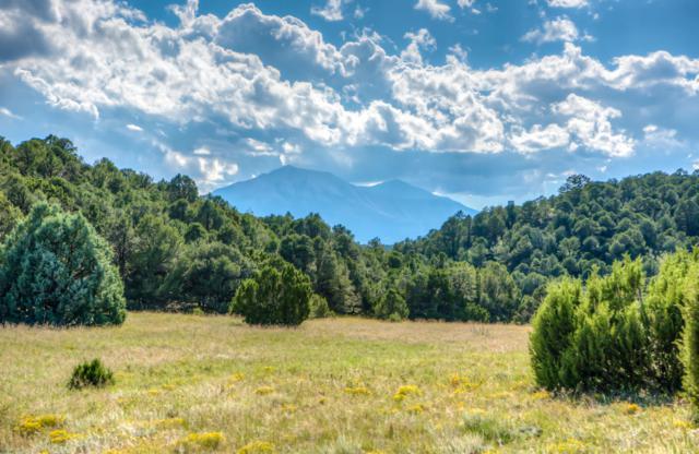 Address Not Published, Walsenburg, CO 81089 (MLS #18-1085) :: Sarah Manshel of Southern Colorado Realty