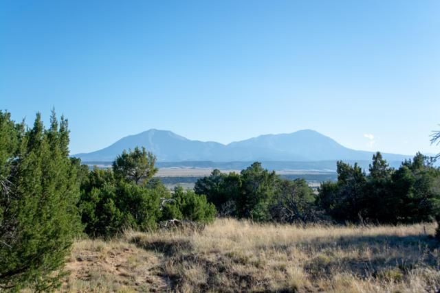 Lot 134 Navajo Ranch Estates, Walsenburg, CO 81089 (MLS #18-1121) :: Big Frontier Group of Bachman & Associates