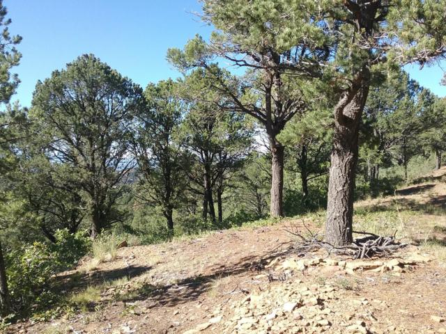TBD Sunset Drive Lot B88, Trinidad, CO 81082 (MLS #18-1123) :: Big Frontier Group of Southern Colorado Realty